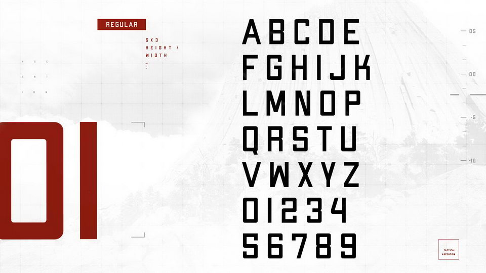 apex new book font free download