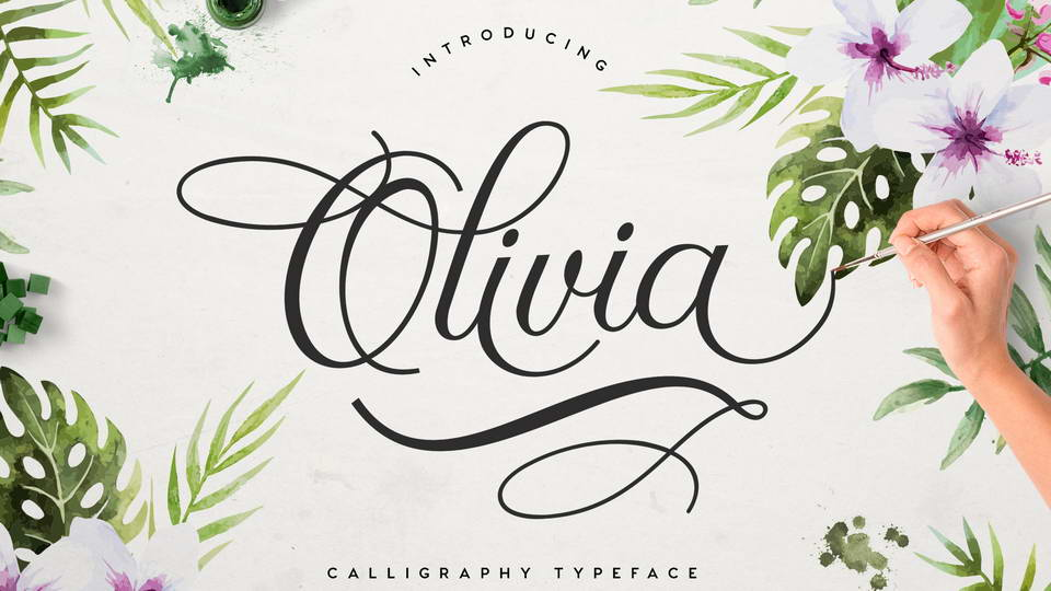 Olivia Is A Free Modern Calligraphy Typeface Both Sophisticated And Graceful Complete With 351 Glyphs Including Uppercase Lowercase Letters Numbers
