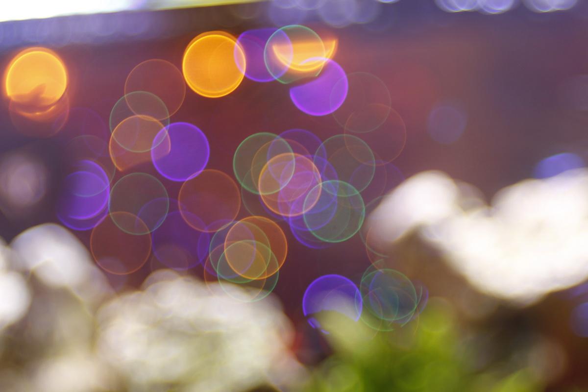 pexels-photo-399937