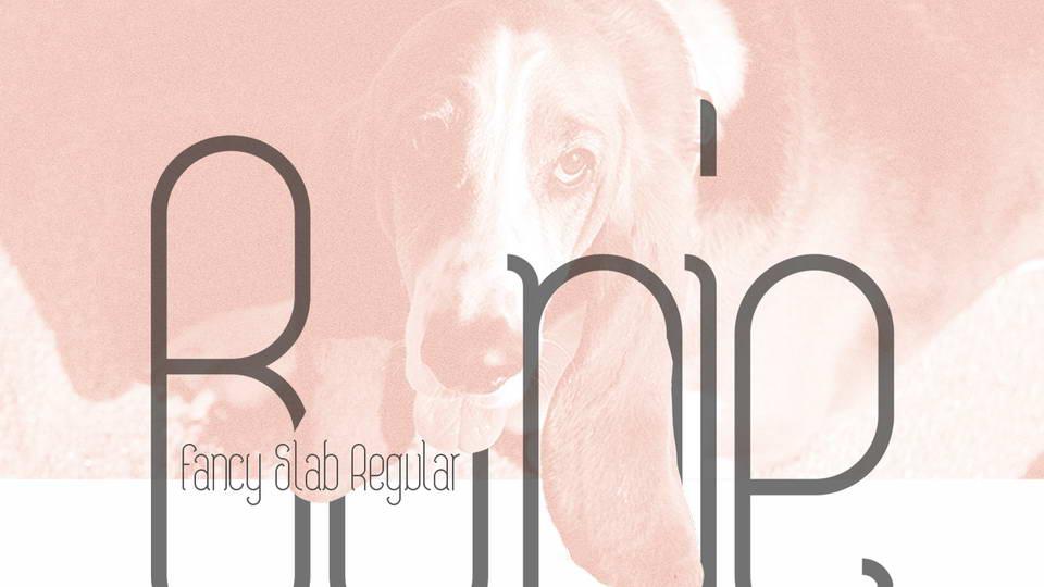 bonie free serif font