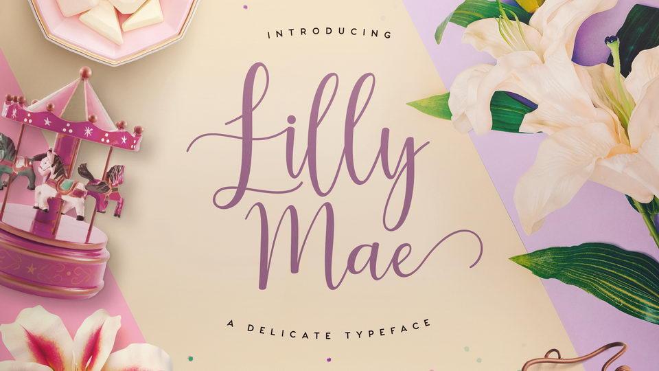 lily mae free font