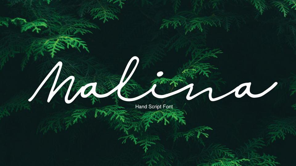 malina free font