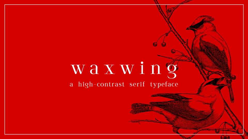 waxwing free font