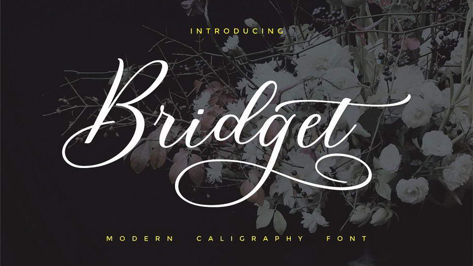 bridgetfreefont