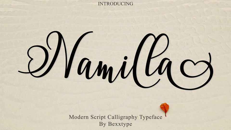 pretty calligraphy fonts