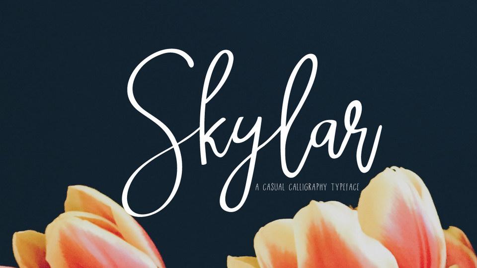 skylarfreefont