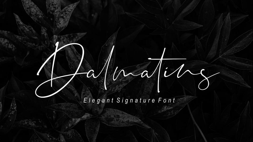 Top 10 Latest Free Signature Fonts for Personal Use · Pinspiry