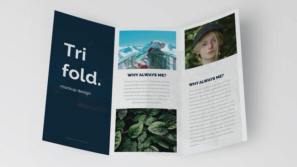 trifold_mockup
