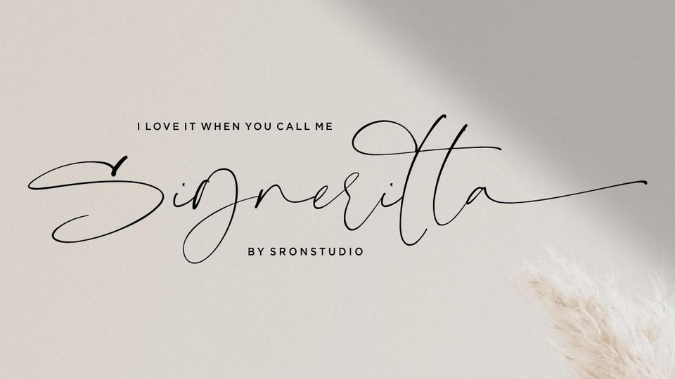 Download The 10 Best Free Signature Fonts of 2019 · Pinspiry