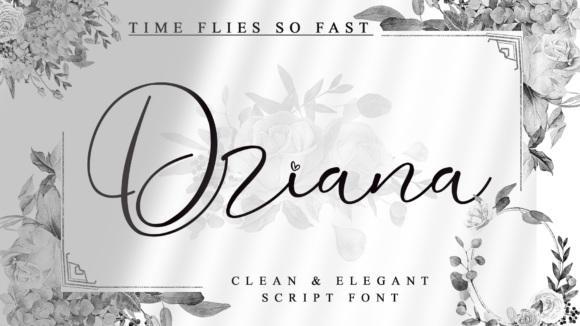 Driana-Fonts-7104150-1-1-580×387